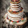 rustic naked wedding Cakes Sussex